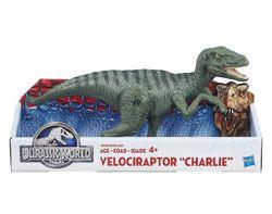 Velociraptor Charlie